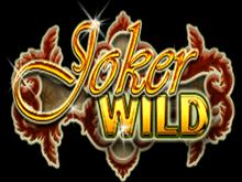 Аппарат Дикий Джокер в интернет казино